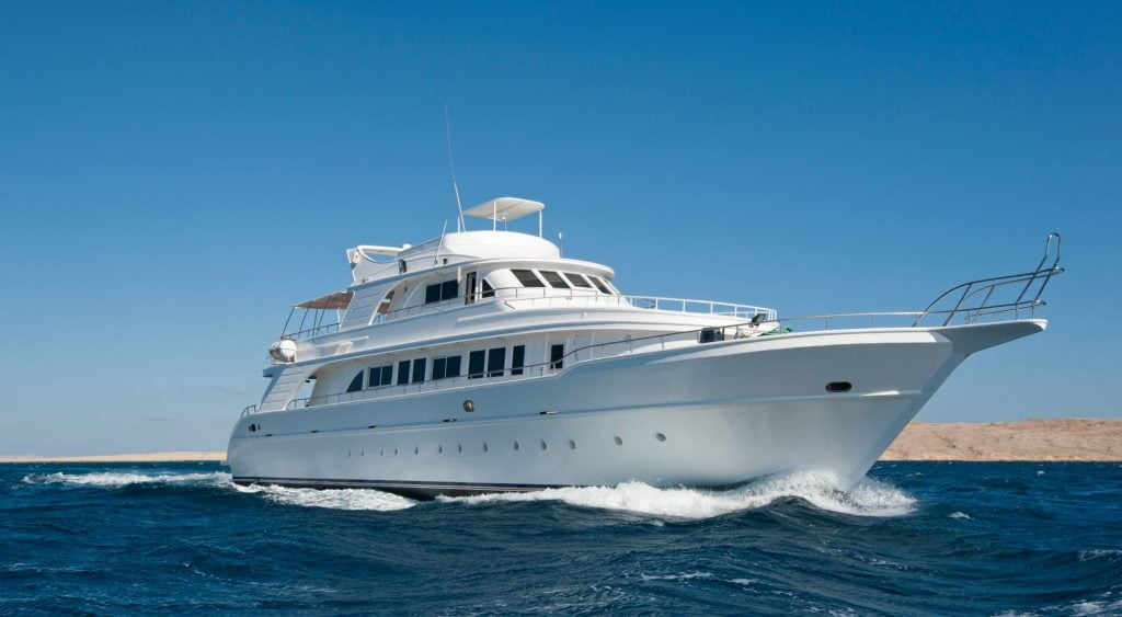 Yacht Pest Control